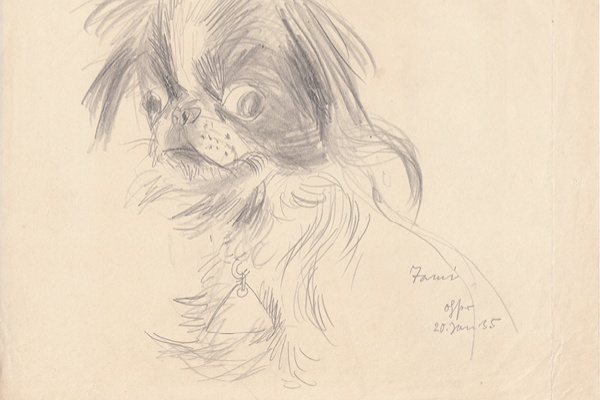 Tami, 1935, Bleistift