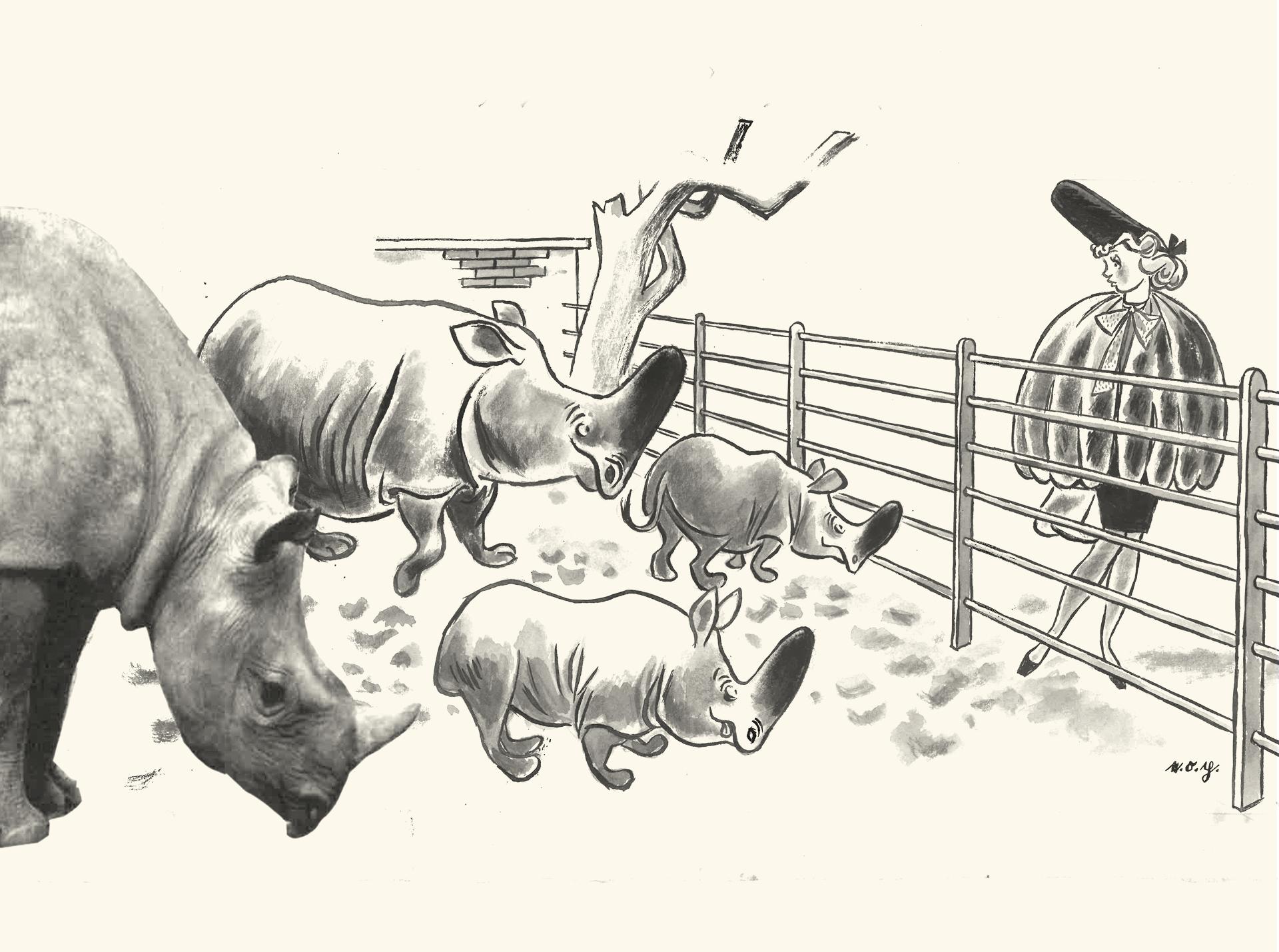 e.o.plauen: Zeichnen im Takt von Presse und Leben