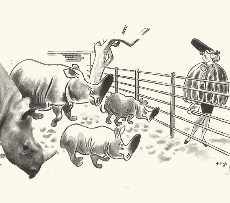Zeichnen im Takt von Presse und Leben